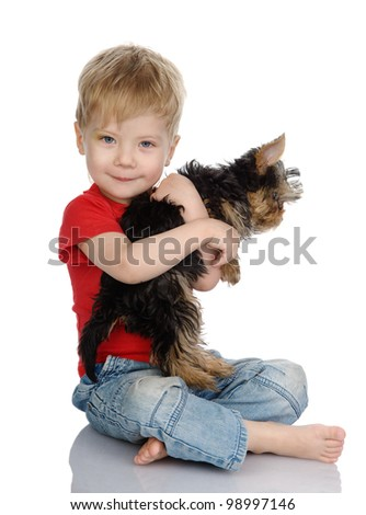 The child embraces a yorkshire terrier's. isolated on white background - stock photo