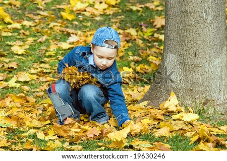 The child plays with fallen maple leaves - stock photo