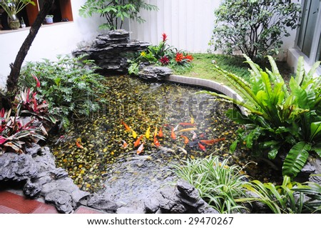 Small garden pond stock photos images pictures for Chinese koi pond