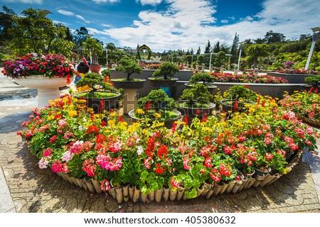 The City flower garden in Dalat, Vietnam - stock photo
