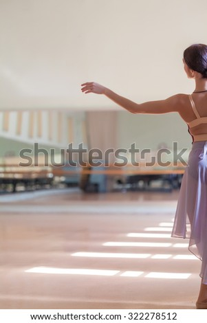 The classic ballet dancer posing at ballet barre on a  rehearsal room background. back view - stock photo
