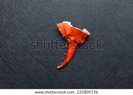 The claws of the crab with orange color put on the black color leather surface background  represent the crab body part and food left over meaning. - stock photo