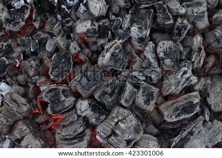 the coals - stock photo