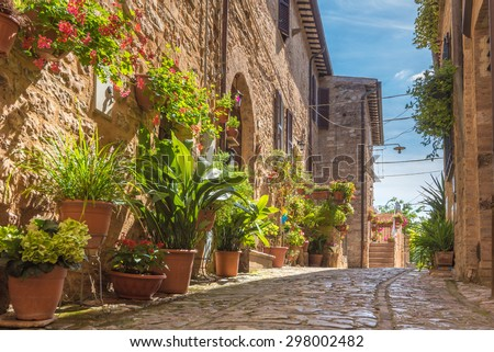The cobbled streets of the beautifully decorated walls with colorful flowers