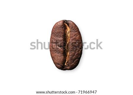 The coffee bean - stock photo
