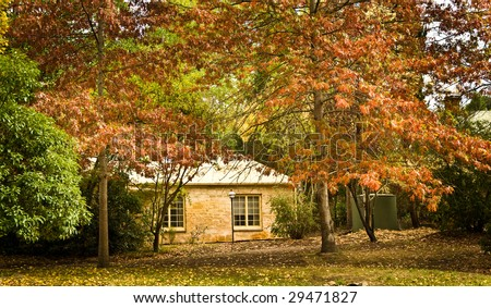 The Colors of Autumn leaves in the hills of Adelaide - stock photo