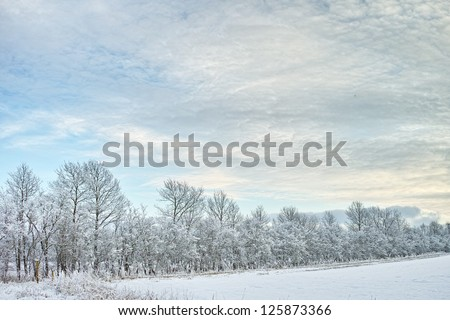 The colors of winter - at the end of the day - stock photo