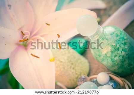 The composition of spa bathing salts and natural flavors - stock photo