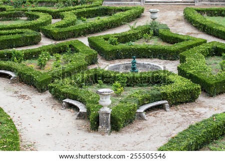The composition of the curly trimmed bushes in the old park. - stock photo