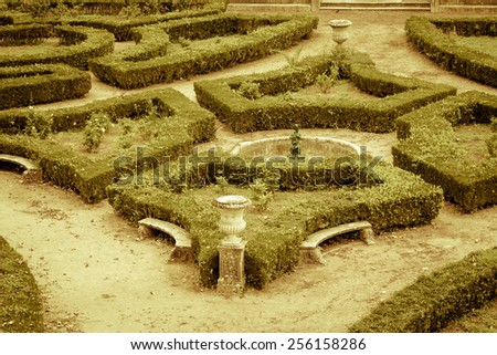 The composition of the curly trimmed bushes in the old park. Toned. - stock photo