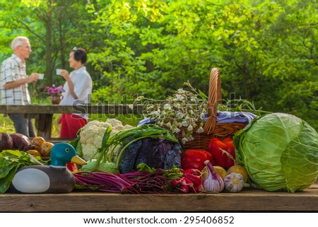 The composition of vegetables with a blurred background