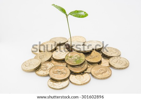 The concept of financial plan - stock photo
