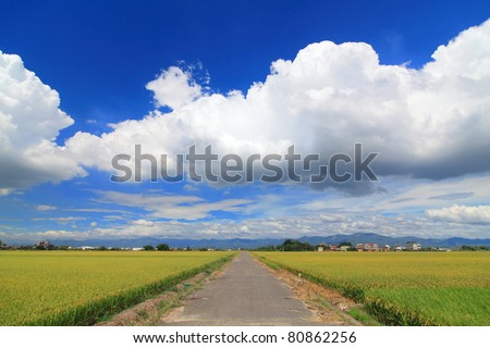 the country road with blue sky and white cloud