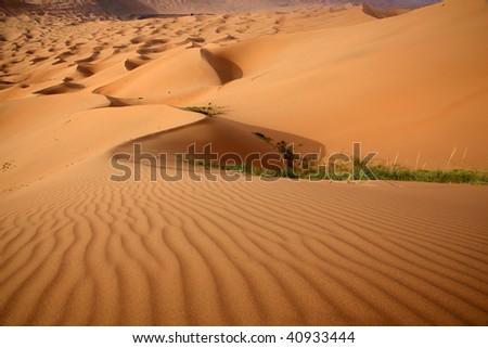The curves of sand hills in Ba Dan Ji Lin desert of Inner Mongolia, China. - stock photo