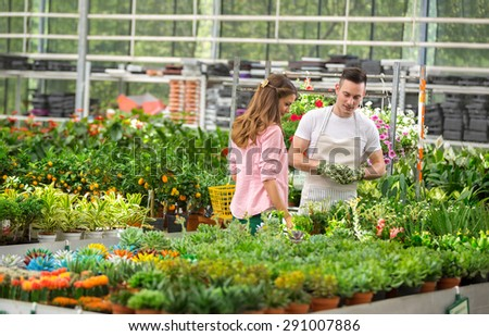 The customer and the florist watch exhibited flowers for sale in a greenhouse - stock photo