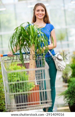The customer pushing the trolley between the rows of plants. - stock photo