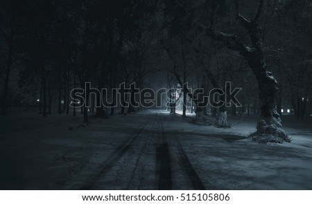 The dark lonely winter park with trees covered by snow