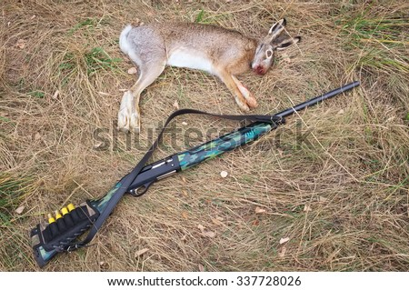 The dead hare and a gun on the grass. Hunting scene with dead hare and shotgun - stock photo