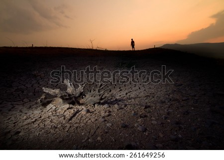 The dead tree on cracked earth with the shadow of child metaphoric for climate change and global warming. - stock photo