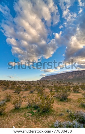 The Desert in Nevada - A Beautiful View - stock photo