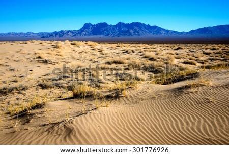 The Desert of Mojave National Preserve - stock photo