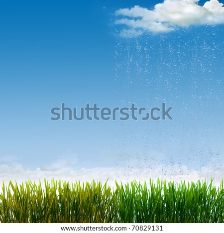 The difference between the grass watered and not watered - stock photo