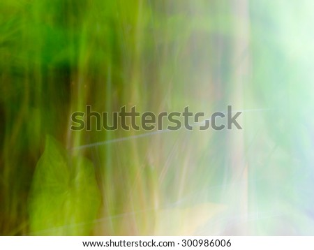 The digital blur Abstract picture. Forest. - stock photo
