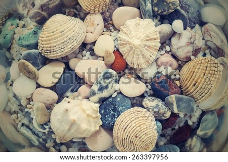 the digital photo with a retro effect of the underwater world of a seabed closeup with various cockleshells and stones in sunlight beams - stock photo