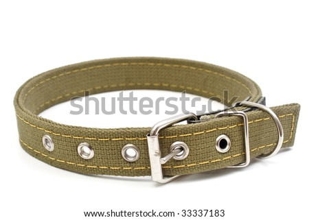 The dog collar is isolated on a white background