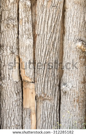 The door boarded up logs - stock photo
