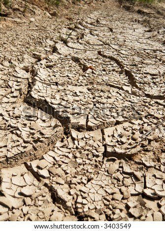 The dry ground after hot summer
