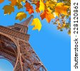 The Eiffel tower, yellow autumn leaves, Paris, France - stock photo
