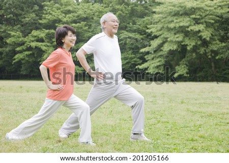 The elderly couple stretching in the park