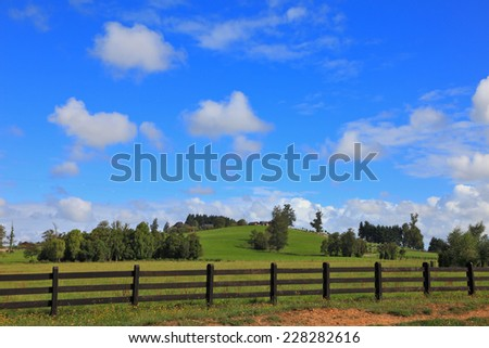 The equal grassy farmer field fenced with a low wooden fence - stock photo