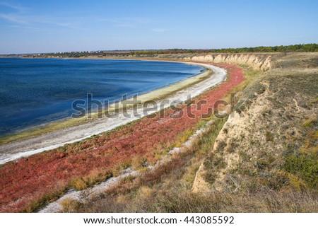 The estuary shore with iodine seaweed (alga). The colorful autumn estuary shore. The estuary salty shore. The scenic landscape of autumn estuary. - stock photo