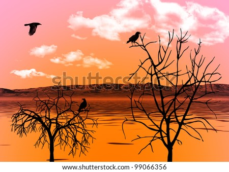 The evening sky reflected in water and ravens on trees - stock photo