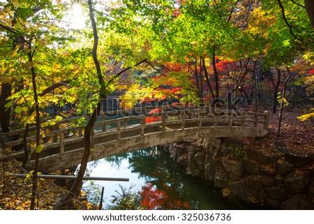 The fall season in Kyunghee University ,Seoul, Korea - stock photo