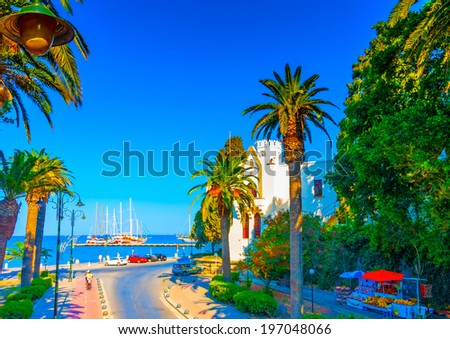 the famous pictorial palms avenue at Kos island in Greece - stock photo