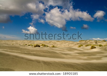 the farewell spit - desert in new zealand