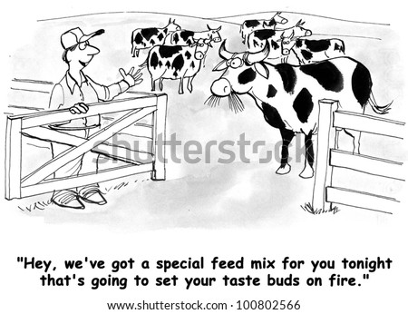 The farmer has prepared a special feed mix for his dairy cows.