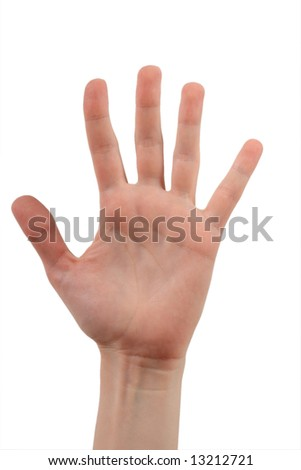 The female open palm with the spred wide fingers on a background