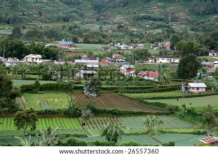 The fertile farmland on the highlands of Brastagi, North Sumatra in Indonesia. - stock photo