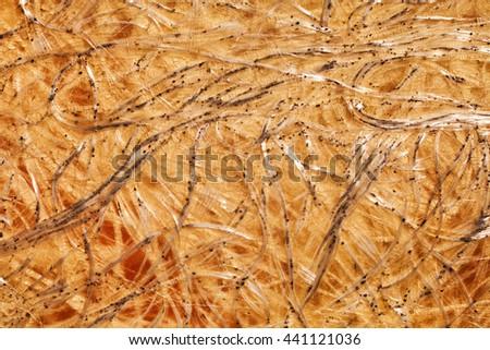 The fibrous texture of carbon plastic macro - stock photo