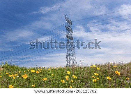 The Field With Yellow Flowers And The High-Tension Wire Pylon