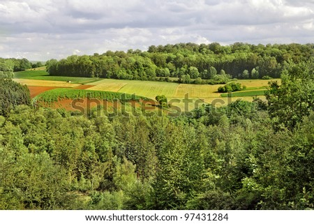 The fields and forests. Landscape. - stock photo