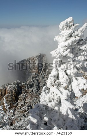 The first storm of the winter on the top of the Sandia Mountains coats the trees, plants and cliffs with ice and snow as the clouds hover around the mountaintops - vertical orientation - stock photo