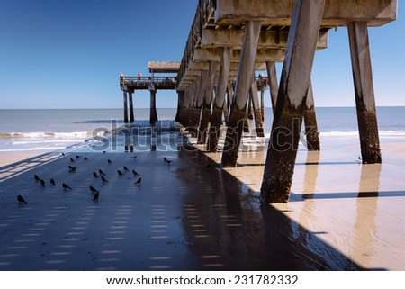 Tybee island stock images royalty free images vectors for Tybee island fishing pier