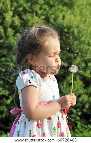 The five years' girl blows on a dandelion
