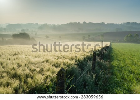 The Flemish Ardennes on an early morning in May - stock photo