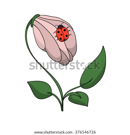 the flower with the bug illustration - stock photo